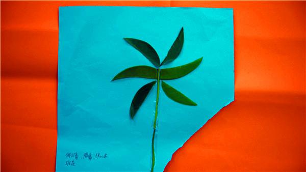 树叶贴画作品展